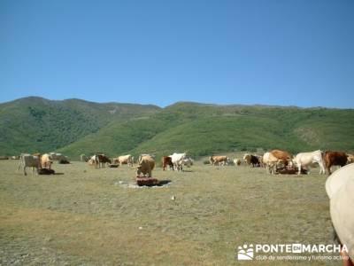 Ascensión a Valdebecerril - senderismo comunidad de madrid; senderismo y montaña singles madrid